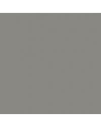 Grey Teal